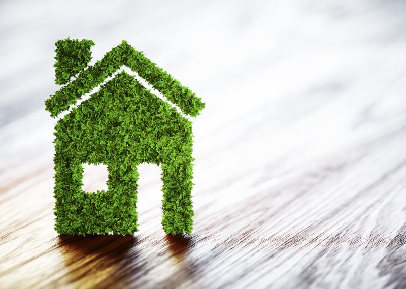 How to make your home more eco friendly this summer